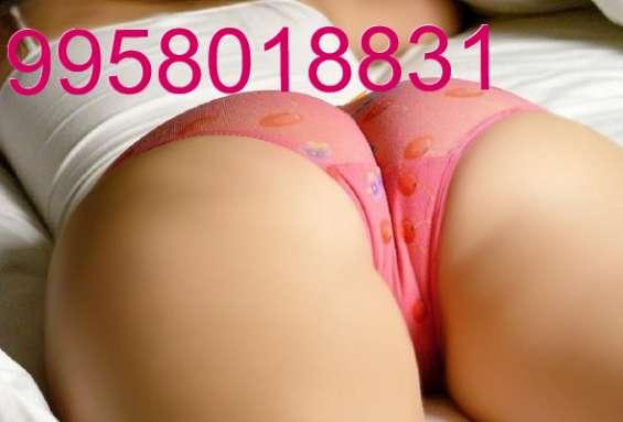 9 9 5 8 o i 8 8 3 i nikki call girls in delhi